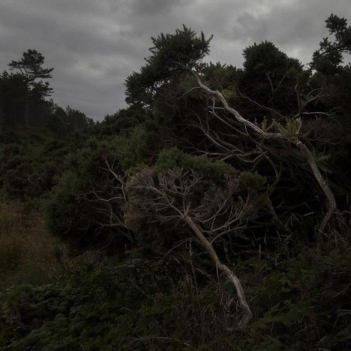 © Charles Roux - Gloomy Glens